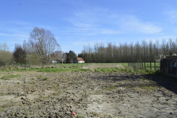 Foto 3 winddichte nieuwbouwwoningen te Oosterzele