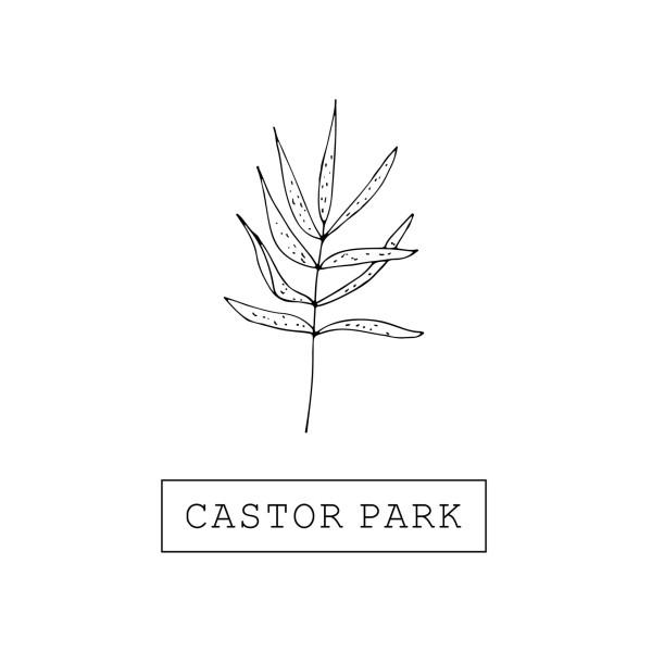 Foto Castor Park