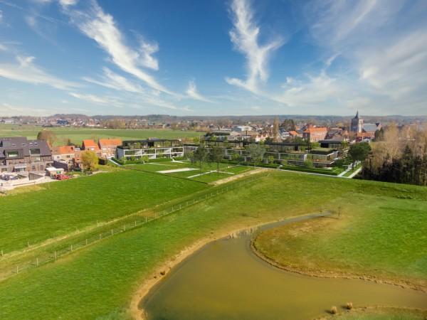 Foto Project Z – Zedelgem